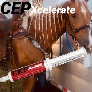 CEP Xcelerate Paste